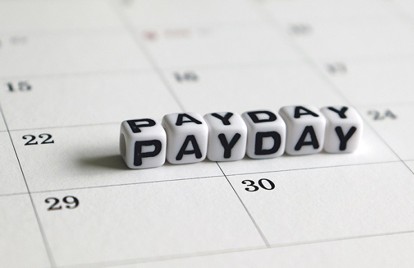ask-PAYE - Employer Monthly Schedules